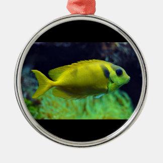 pescados Azul-manchados Siganus Corallinus de Adorno Navideño Redondo De Metal