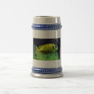 pescados Azul-manchados Siganus Corallinus de Jarra De Cerveza