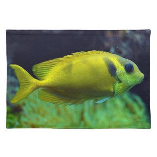 pescados Azul-manchados Siganus Corallinus de Spin Mantel Individual