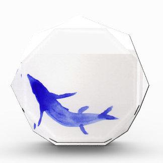 Pescados azules de Koi