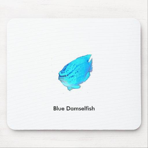 Pescados azules de la damisela, Damselfish azul Tapete De Raton