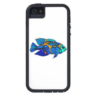 Pescados azules de Óscar iPhone 5 Case-Mate Funda