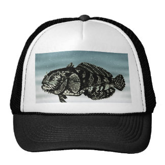 Pescados azules gorras