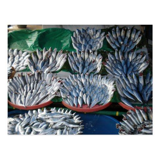 Pescados azules postal
