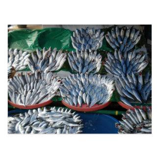 Pescados azules tarjetas postales