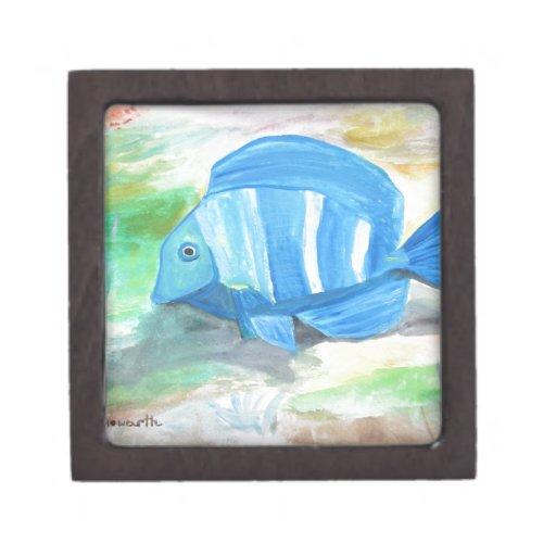 Pescados azules tropicales caja de regalo de calidad