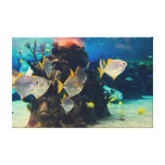 Pescados bonitos del acuario impresión en lona