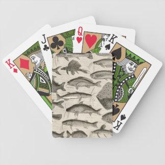 Pescados científicos del vintage que nadan las ale baraja de cartas