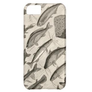 Pescados científicos del vintage que nadan las ale funda para iPhone 5C