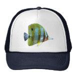 Pescados Cobre-Congregados de la mariposa Gorros Bordados