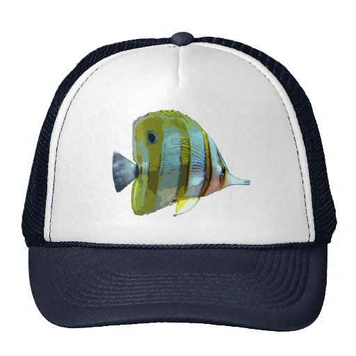Pescados Cobre-Congregados de la mariposa Gorra