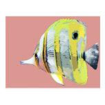pescados Cobre-congregados de la mariposa Tarjetas Postales