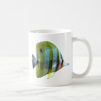 Pescados Cobre-Congregados de la mariposa Taza Básica Blanca