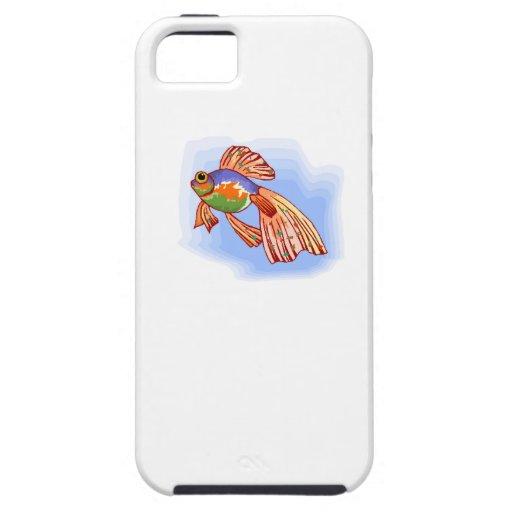 Pescados coloridos de Betta iPhone 5 Cárcasa