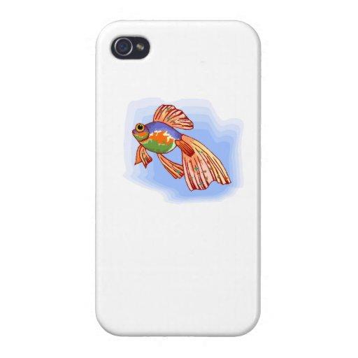 Pescados coloridos de Betta iPhone 4/4S Funda
