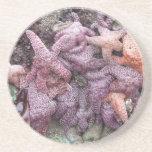 Pescados coloridos de la estrella posavasos manualidades