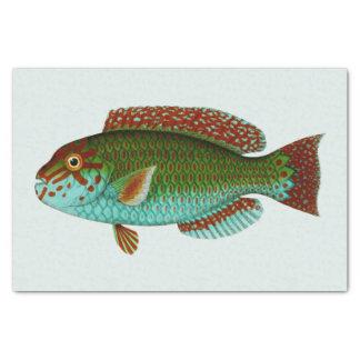 Pescados coloridos del vintage papel de seda pequeño