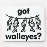 pescados conseguidos de los leucomas tapetes de ratón