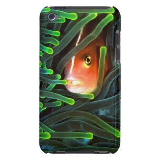 Pescados de anémona que ocultan en la anémona, iPod touch carcasas
