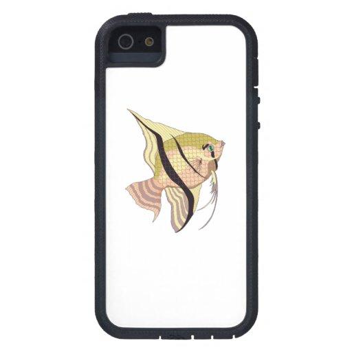 Pescados de Betta iPhone 5 Carcasa