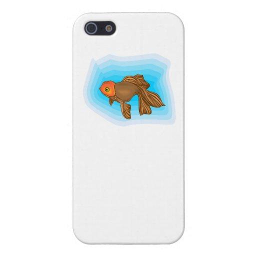 Pescados de Brown Betta iPhone 5 Protectores