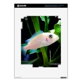 Pescados de Cichlid africanos blancos iPad 3 Skins