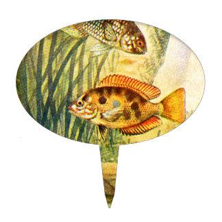 Pescados de Cichlid del vintage Decoraciones De Tartas