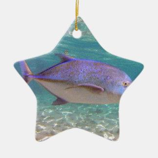 Pescados de Hawaii Trevally Adorno Navideño De Cerámica En Forma De Estrella