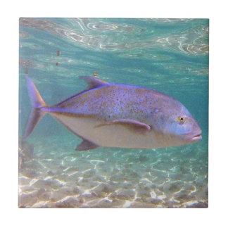 Pescados de Hawaii Trevally Azulejo Cuadrado Pequeño