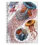 Pescados de jalea de Ernst Haeckel Libreta Espiral