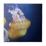 Pescados de jalea del océano profundo tejas  ceramicas