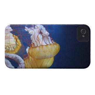 Pescados de jalea del océano profundo iPhone 4 Case-Mate cobertura