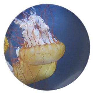 Pescados de jalea del océano profundo plato para fiesta