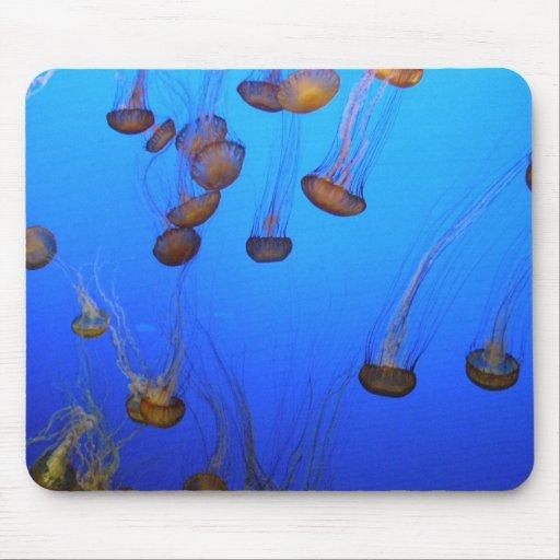 Pescados de jalea tapete de ratón