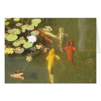Pescados de Koi con el lirio en una charca Tarjeta De Felicitación