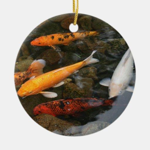 Pescados de Koi en fotografía de la charca Ornamentos Para Reyes Magos