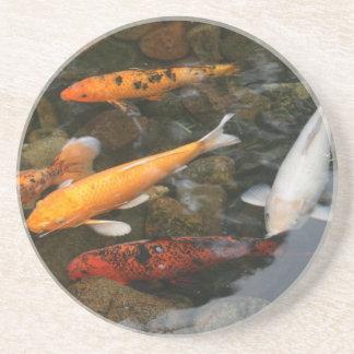 Pescados de Koi en fotografía de la charca Posavasos Para Bebidas