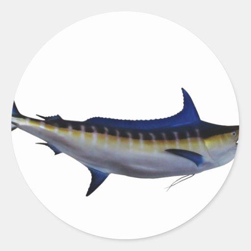 Pescados de la aguja azul etiqueta