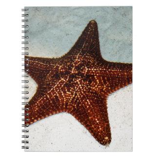 Pescados de la estrella libretas