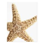Pescados de la estrella postal