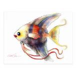 Pescados de la fantasía: Angélica Postales