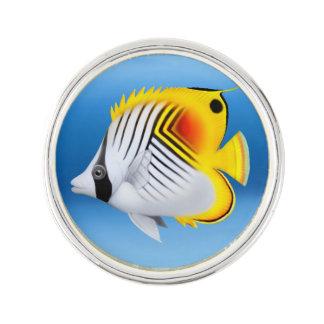 Pescados de la mariposa del Threadfin del auriga Insignia