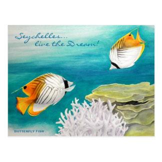 Pescados de la mariposa tarjetas postales