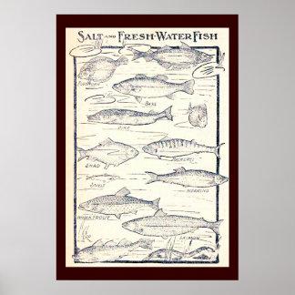 Pescados de la sal y de agua dulce póster
