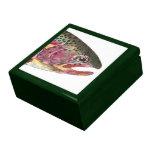 Pescados de la trucha arco iris cajas de regalo