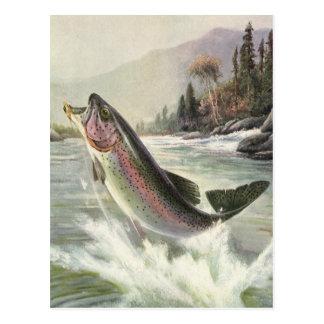 Pescados de la trucha arco iris de la pesca del tarjetas postales