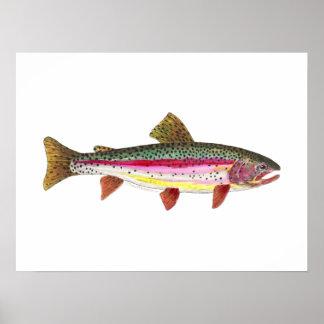 Pescados de la trucha arco iris póster