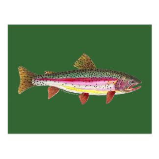 Pescados de la trucha arco iris tarjetas postales