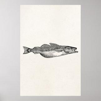 Pescados de los gados del vintage - plantilla póster