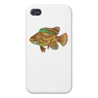 Pescados de Óscar iPhone 4/4S Carcasas
